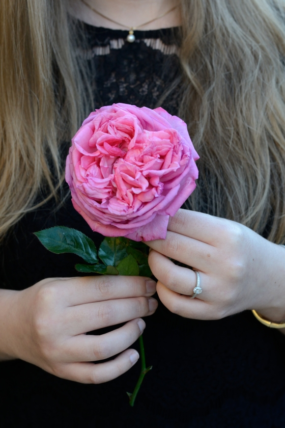 LBD and pink garden rose